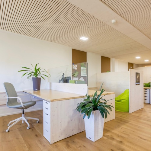 From cubicle box to green and dreamy woodland office